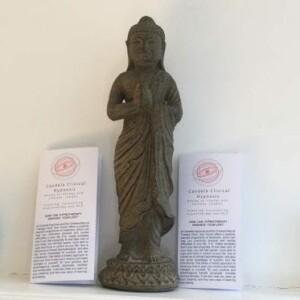Standing Contemplation Buddha