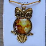 Owl_Gold_Cl