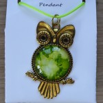 Owl_Green_Cl